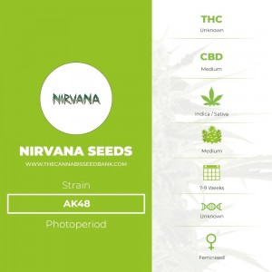 AK48 (Nirvana Seeds) - The Cannabis Seedbank
