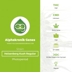 Heisenberg Kush Regular (Alphakronik Genes) - The Cannabis Seedbank