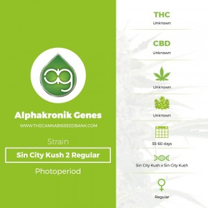Sin City Kush 2 Regular (Alphakronik Genes) - The Cannabis Seedbank