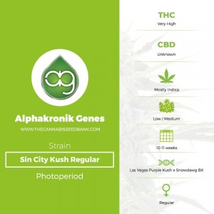 Sin City Kush Regular (Alphakronik Genes) - The Cannabis Seedbank