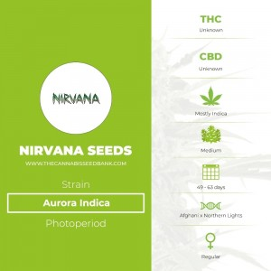 Aurora Indica Regular (Nirvana Seeds) - The Cannabis Seedbank