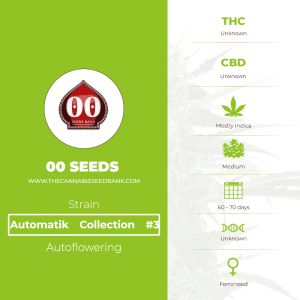 Automatik Collection #3 Auto (00 Seeds) - The Cannabis Seedbank