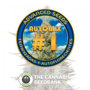 Collection #1 AUTO (Advanced Seeds) - The Cannabis Seedbank