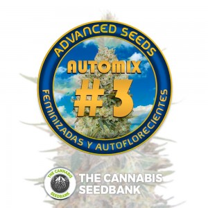 Collection #3 AUTO (Advanced Seeds) - The Cannabis Seedbank