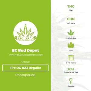 Fire OG BX3 Regular (BC Bud Depot) - The Cannabis Seedbank