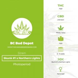 Skunk #1 x Northern Lights (BC Bud Depot) - The Cannabis Seedbank