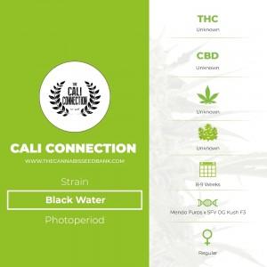 Black Water Regular (Cali Connection) - The Cannabis Seedbank