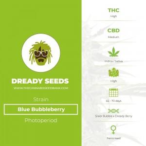 Blue Bubbleberry (Dready Seeds) - The Cannabis Seedbank