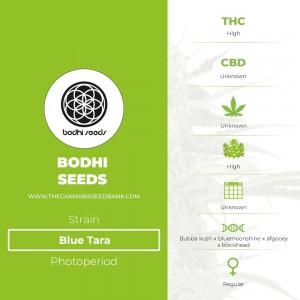 Blue Tara Regular (Bodhi Seeds) - The Cannabis Seedbank