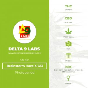 Brainstorm Haze X G13 Regular (Delta 9 Labs) - The Cannabis Seedbank