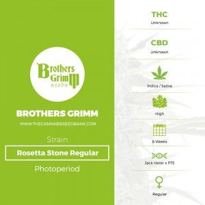 Rosetta Stone Regular (Brothers Grimm Seeds) - The Cannabis Seedbank
