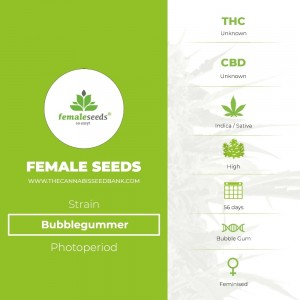 Bubblegummer (Female Seeds) - The Cannabis Seedbank