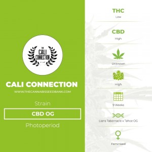 CBD OG (Cali Connection) - The Cannabis Seedbank