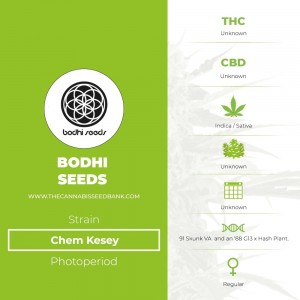 Chem Kesey Regular (Bodhi Seeds) - The Cannabis Seedbank