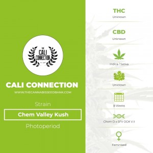 Chem Valley Kush (Cali Connection) - The Cannabis Seedbank