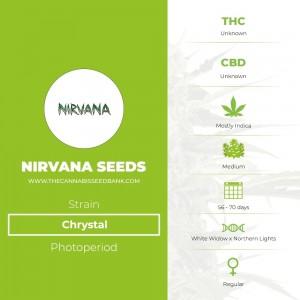 Chrystal Regular (Nirvana Seeds) - The Cannabis Seedbank
