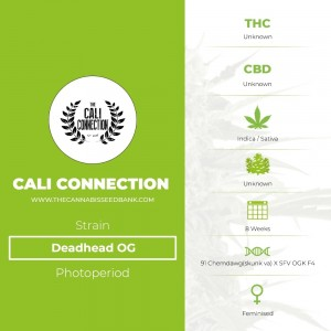 Deadhead OG (Cali Connection) - The Cannabis Seedbank