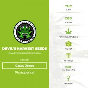 Casey Jones (Devils Harvest Seeds) - The Cannabis Seedbank