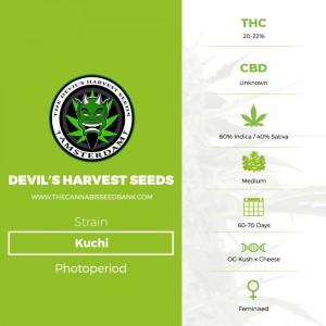 Kuchi (Devils Harvest Seeds) - The Cannabis Seedbank