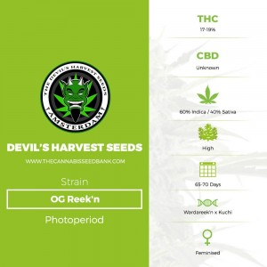 OG Reek'n (Devils Harvest Seeds) - The Cannabis Seedbank