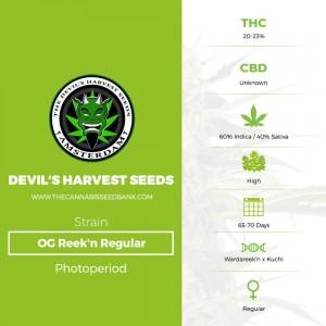 OG Reek'n Regular (Devils Harvest Seeds) - The Cannabis Seedbank