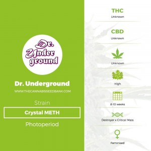 Crystal METH (Dr Underground) - The Cannabis Seedbank