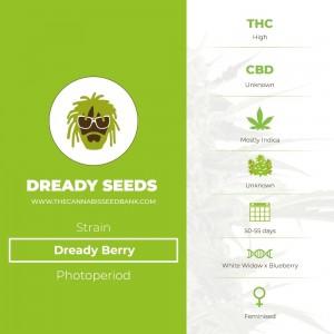 Dready Berry (Dready Seeds) - The Cannabis Seedbank