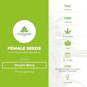 Dream Berry (Female Seeds) - The Cannabis Seedbank