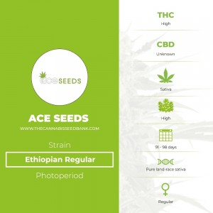 Ethiopian Regular (Ace Seeds) - The Cannabis Seedbank