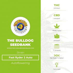 Fast Ryder 2 Auto (The Bulldog Seedbank) - The Cannabis Seedbank