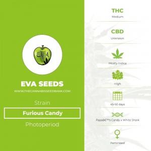 Furious Candy (Eva Seeds) - The Cannabis Seedbank