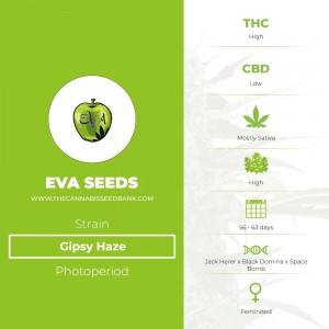 Gipsy Haze (Eva Seeds) - The Cannabis Seedbank
