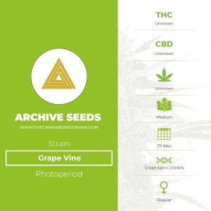 Grape Vine Regular (Archive Seeds) - The Cannabis Seedbank