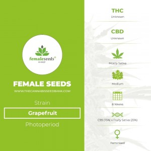 Grapefruit (Female Seeds) - The Cannabis Seedbank