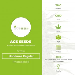 Honduras Regular (Ace Seeds) - The Cannabis Seedbank