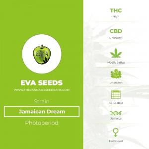 Jamaican Dream (Eva Seeds) - The Cannabis Seedbank