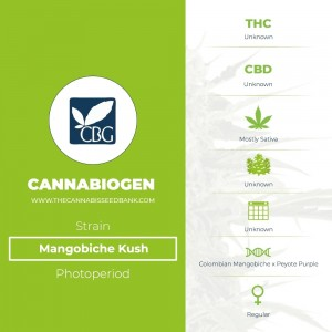 Mangobiche Kush Regular (Cannabiogen) - The Cannabis Seedbank