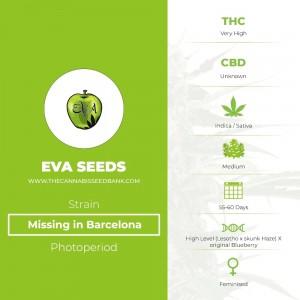 Missing in Barcelona (M.I.B.) (Eva Seeds) - The Cannabis Seedbank