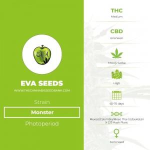 Monster (Eva Seeds) - The Cannabis Seedbank