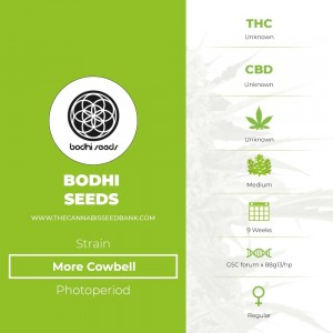 More Cowbell Regular (Bodhi Seeds) - The Cannabis Seedbank