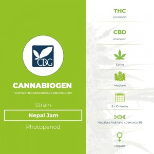 Nepal Jam Regular (Cannabiogen) - The Cannabis Seedbank