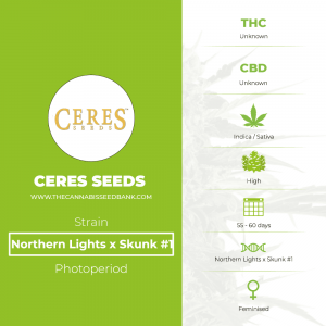 Northern Lights x Skunk #1 (Ceres Seeds) - The Cannabis Seedbank