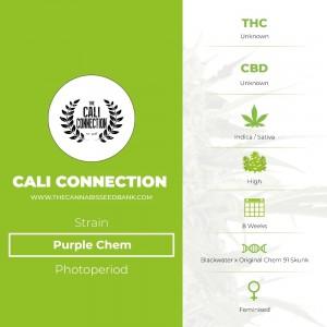 Purple Chem (Cali Connection) - The Cannabis Seedbank