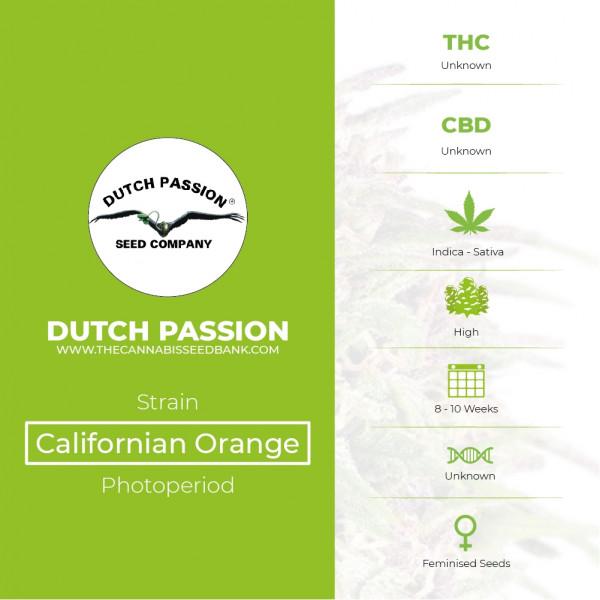 Californian Orange - Feminised - Dutch Passion - Characteristics