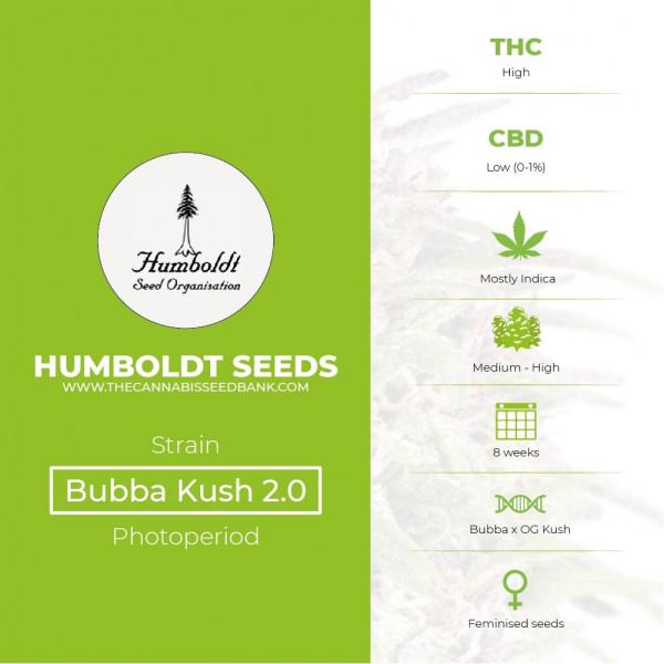 Bubba Kush 2.0 Feminised Humboldt Seeds - Characteristics