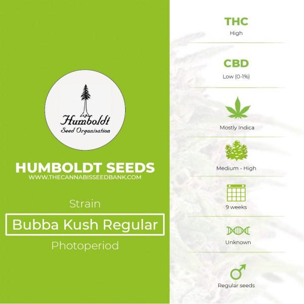 Bubba Kush Regular Seeds Humboldt Seeds - Characteristics