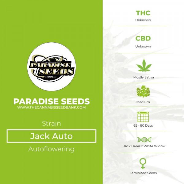 Jack Auto - Autoflowering - Paradise Seeds - Characteristics