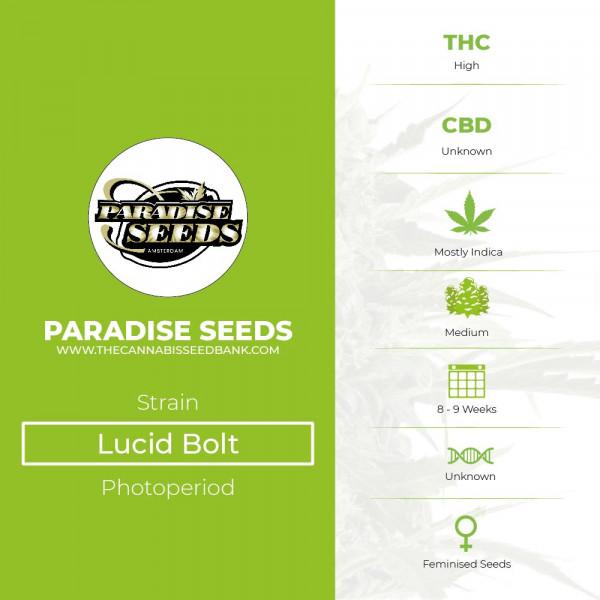 Lucid Bolt - Feminised - Paradise Seeds - Characteristics