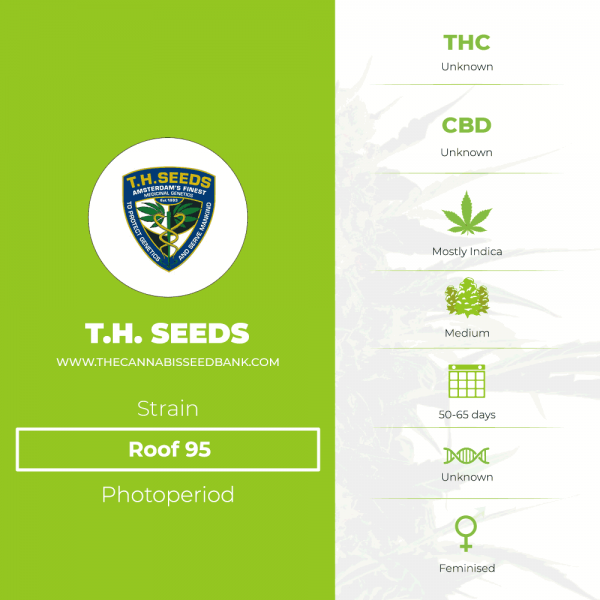 Roof 95 (T.H. Seeds) - The Cannabis Seedbank
