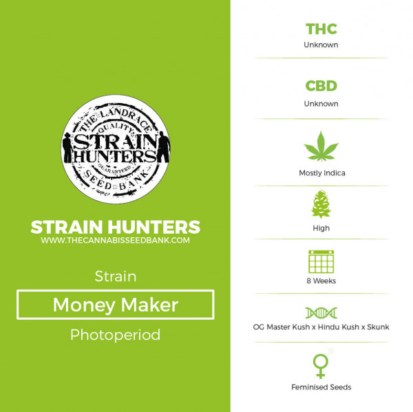 Money Maker - Feminised - Strain Hunters - Characteristics